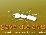 Jouer à Save the ants