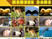 Jouer à Memory game animals