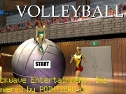 Jouer à Volleyball